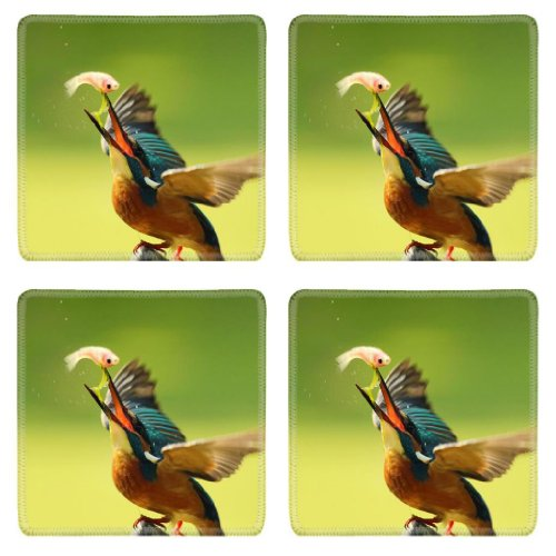 Birds Animals Fish Kingfisher Feeding Square Coaster (4 Piece) Set Fabric Rubber 5 1/8 Inch (130Mm) Size Coaster Cup Mug Can Water Bottle Drink Coasters Stain Resistance Collector Kit Kitchen Table Top Desk front-604635