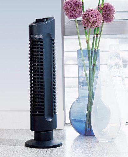 Cheap Sharper Image Silent Air Purifier SI397-BLK (SI397-BLK)
