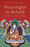 img - for Meaningful to Behold: Becoming a Friend of the World book / textbook / text book