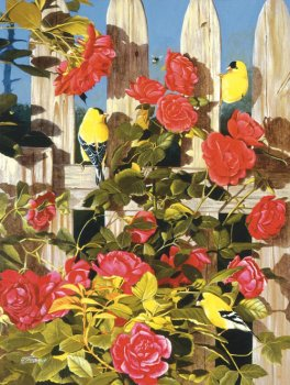 Gold-and-Roses-By-Fred-Szatkowski-500-Pc-Jigsaw-Puzzle