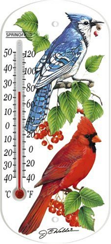 taylor-precision-products-8-inch-blue-jay-indoor-outdoor-tube-thermometer