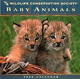 Baby Animals 2000 Calendar