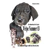 """Welpe Nummer 13  Ein Hundekind erz�hlt aus seinem Leben Die Geschichte einer Deutschen Dogge: Ein Buch vom Hund f�r Kindervon """"Daniela Behr"""""""