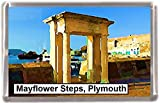 Mayflower steps plymouth Gift Souvenir Fridge Magnet