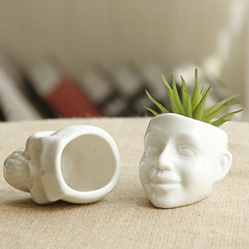 New Ceramic Flower Pot White Skull Capita DIY Small Planter Succulent Plants Potted Ashtray Desktop Ornaments Home Office Decor