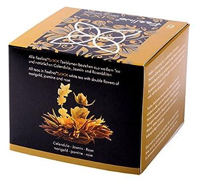 """Feelino Edle 6er-Box Weißtee-Teeblumen mit je """"2 Blüten"""" in toller Probier- und Geschenkbox """"SIXX"""", 6 Weißtee-Teerosen, 1er Pack von Feelino auf Gewürze Shop"""