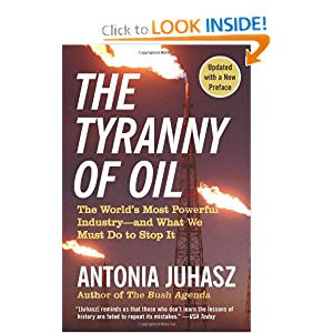 The World's Most Powerful Industry (2009) - Antonia Juhasz