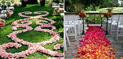 Achetez 1 obtenez 1 GRATUIT S Gradient Blanc Boîte de pétales de Rose de Simulation Scatters Confettis de Table