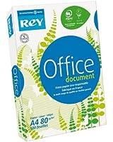 PAPYRUS Ramette 500 feuilles papier blanc OFFICE DOCUMENT PAPER 80g format A4