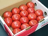 静岡県産 トマト アメーラ フルーツトマト 秀品 (12?20玉)