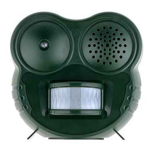 new-version-anpro-battery-operated-middle-sized-animal-cat-repellent-with-motion-activated-led-light