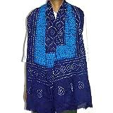 """Gestreift Blauer Schal f�r Damen 223 cm x 101 cmvon """"ShalinIndia"""""""
