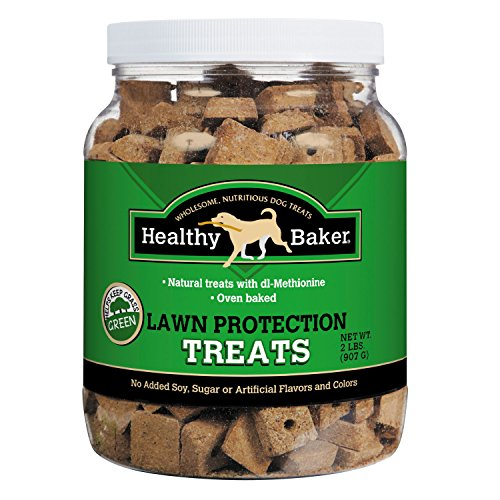 healthy-baker-lawn-protection-biscuits-wholesome-and-delicious-treats-for-dogs-2-lbs