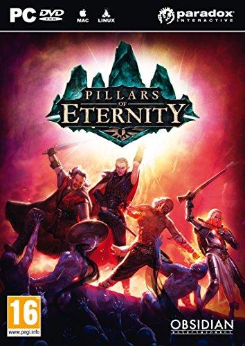 Pillars of Eternity – édition hero