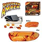 Discover Amber Science Kitby Dr. Cool Science