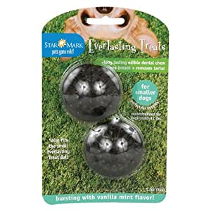 Everlasting Treat Ball Treats - 2 pack Small - Vanilla Mint