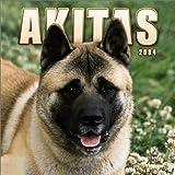 Akitas 2004 Calendar
