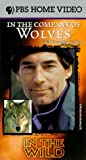 In the Wild - In the Company of Wolves with Timothy Dalton [VHS]