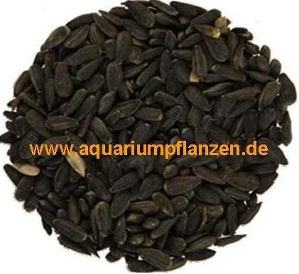 20 kg schwarze Sonnenblumenkerne, Vogelfutter