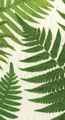 Entertaining with Caspari Set of 2 John Derian Ferns, 30 Paper Guest Towels.
