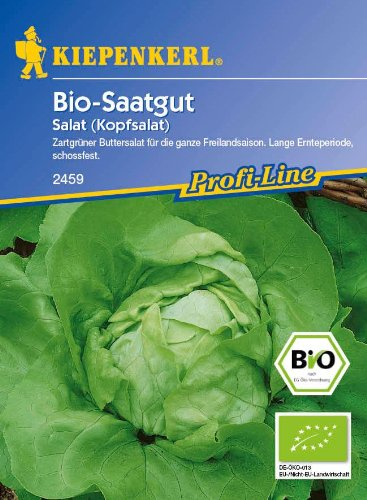 Salat: Ovation (Bio-Saatgut), Lactuca sativa var. capitata - 1 Portion