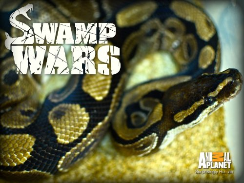 Swamp Wars Season 3