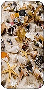 Snoogg Shells Marine Romantic Still Life Designer Protective Back Case Cover ...