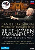 Nine Symphonies [DVD] [Import]