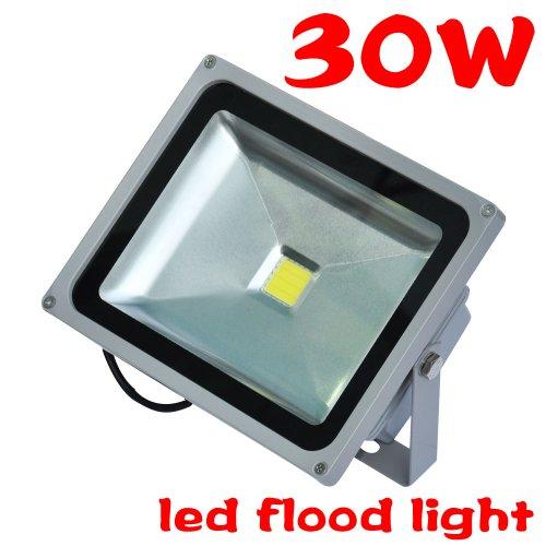 Tsss Xpt-Ledt30Wb 30-Watt High Quality Led Spot/Flood Light, Cool White