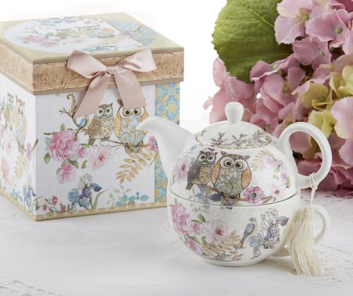 Porcelain Tea for One with Decorative Gift Box, Owls (Teapots For One compare prices)