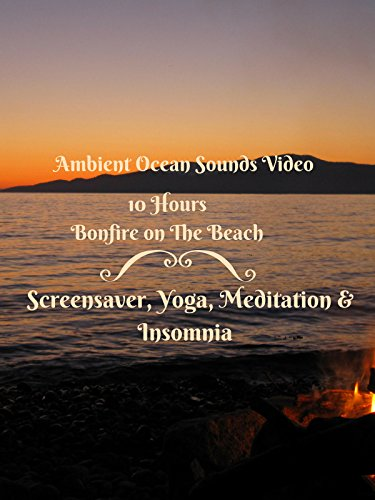 Ocean Beach Bonfire Hours