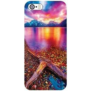 Apple iPhone 5S Back Cover - Superb Designer Cases