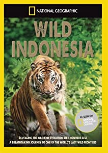 National Geographic - Wild Indonesia [DVD]