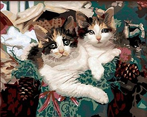 16*20 Inches Paint By Numbers Cute Cat