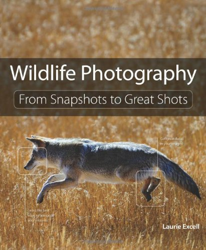 Wildlife Photography: From Snapshots to Great Shots PDF