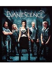 バンド パンク ロック Tシャツ Evanescence エヴァネッセンス メンバーフォト Mサイズ 黒 REO-051M