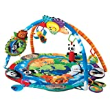 Baby Einstein Around The World Play Gym