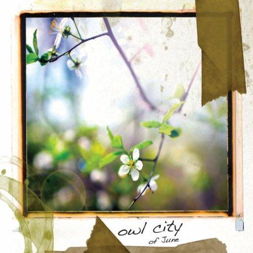 Owl City - Swimming In Miami Lyrics - Zortam Music