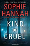 Kind of Cruel: A Novel (A Zailer &