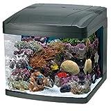 Oceanic 82052 BioCube Aquarium, 29-Gallon