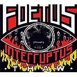 Thaw ~ Foetus Interruptus