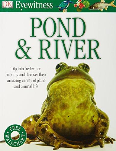 Pond & River (Eyewitness)