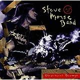 Structural Damage ~ Steve Morse