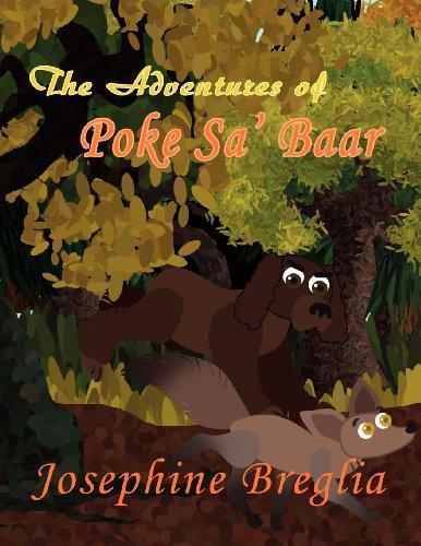 The Adventures of Poke Sa' Baar