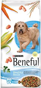 Purina Beneful Healthy Smile Dry Dog Food, 27.5-Pound