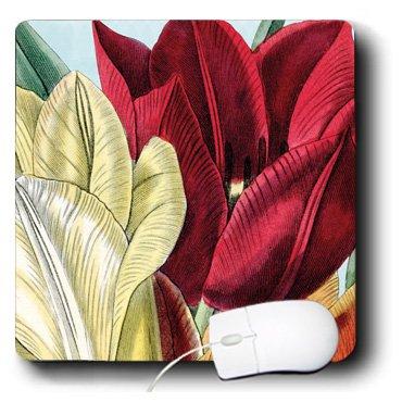 PS Vintage - Vintage Tulip Flowers - MousePad (mp_203816_1)