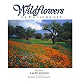 Wildflowers of California ~ Susan Lamb