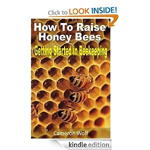raising honey bees