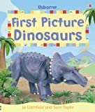 Felicity Brooks First Picture Dinosaurs (First Picture Books) (Usborne First Picture Books)
