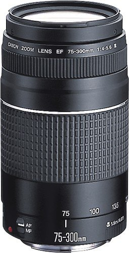 Canon EF 75-300mm f/4-5.6 III Telephoto Zoom Lens for Canon SLR Cameras (Certified Refurbished) (Canon Long Range Lens compare prices)